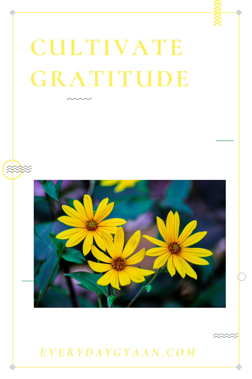 Cultivating Gratitude During The Pandemic