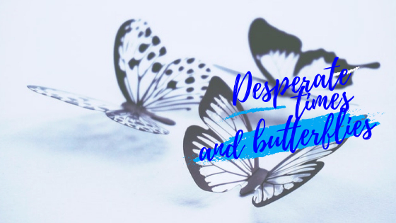 desperate times and butterflies