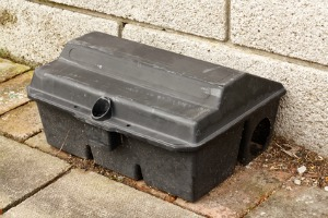rat trap to control rat problem