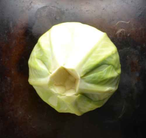 Top down view of white cabbage with middle cut out on dark surface.