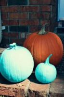 Allergy Friendly Halloween #TealPumpkinProject