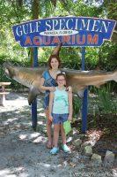 Gulf Specimen Marine Lab in Panacea Florida