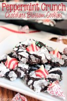 Peppermint Crunch Chocolate Blossom Cookies
