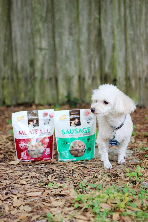 Besides going in for routine vet visits, how can you keep your furry family member healthy? After being pet parents for almost twenty years here are our tried and true: 5 Tips on Keeping Your Dog Healthy. #ad #NutrishRealMeatTreats #NutrishPets | EverydayMadeFresh.com