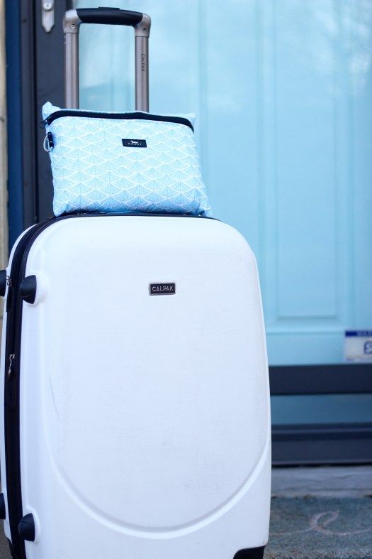 travel light with Scout