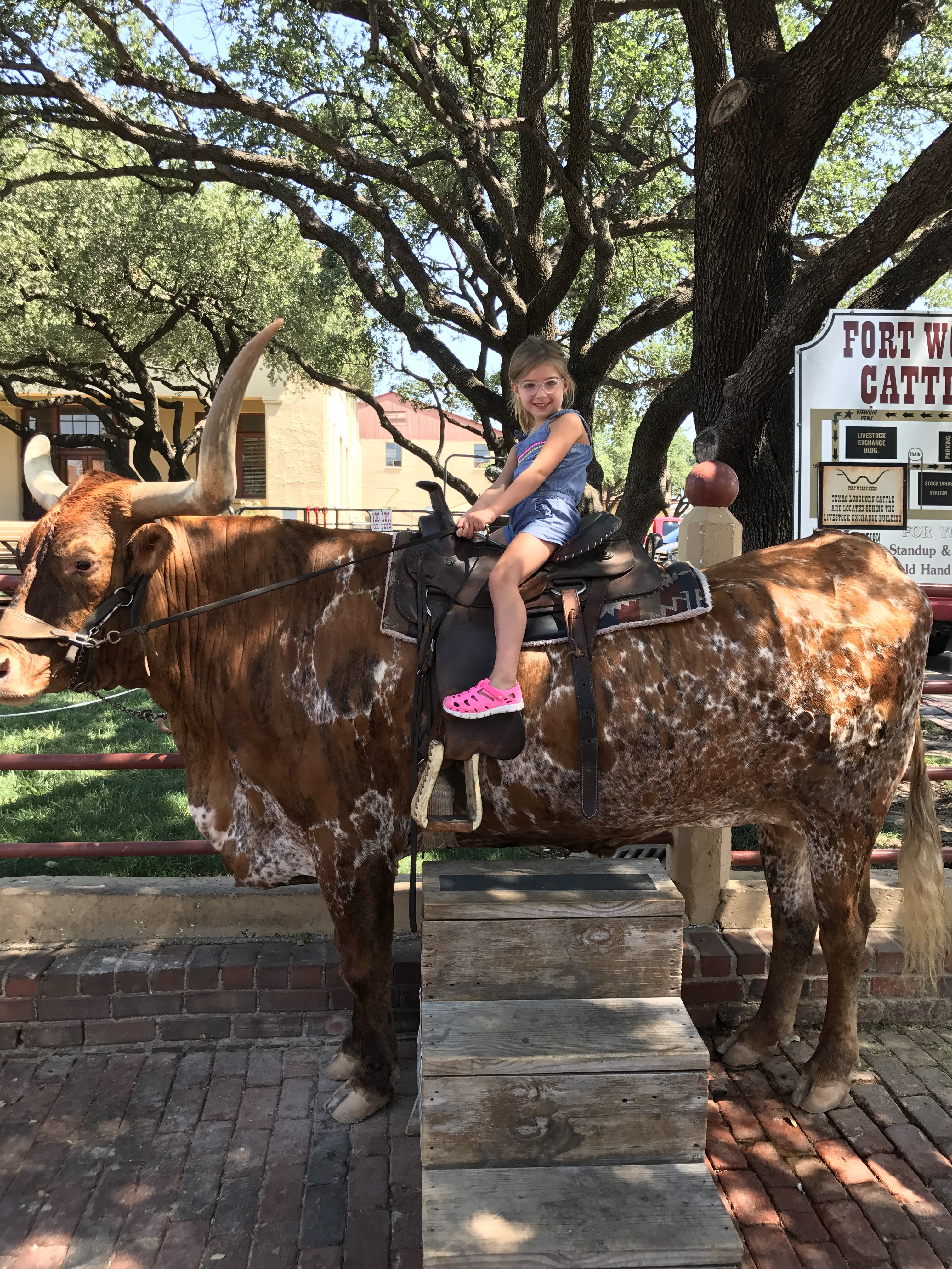Texas Summer Family Fun