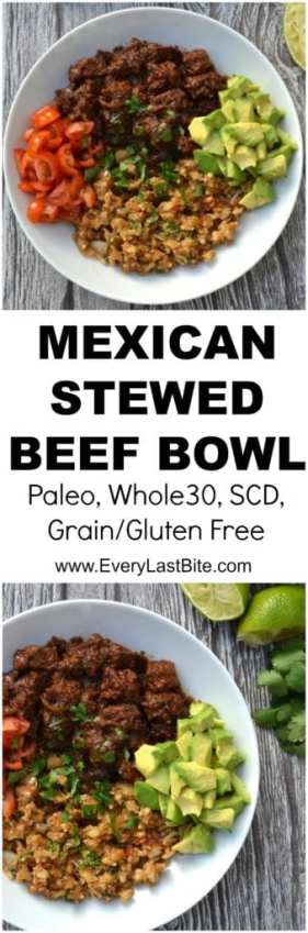 Mexican Stewed Beef Bowl