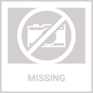 Iowa State University Cyclones Mascot Area Rug - Nylon