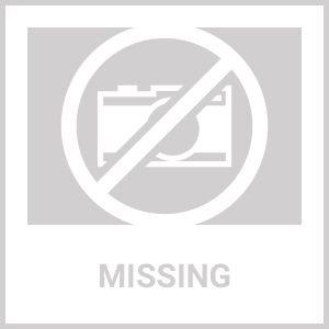 """Iowa State University Cyclones Logo Roundel Mat - 27"""""""