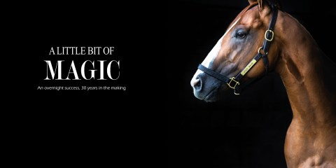 Good Magic e five racing