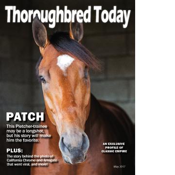 Thoroughbred Today Magazine