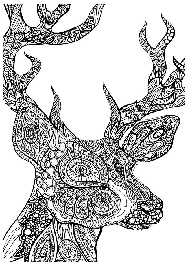 Printable Coloring Pages for Adults 15 Free Designs | coloring books for adults animals