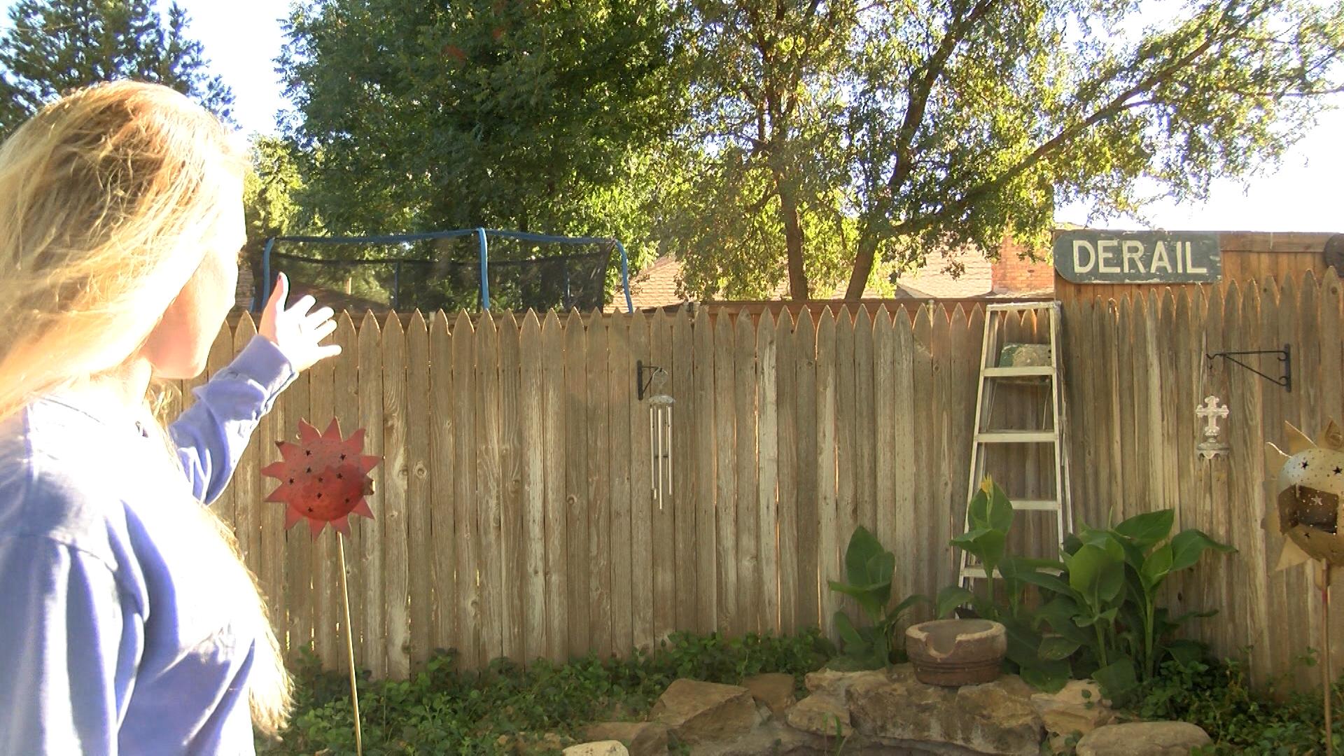 backyard fence_1476773341069.jpg