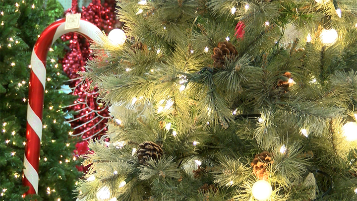 Christmas Tree Recycle Design.City Of Lubbock To Offer Fresh Cut Christmas Tree Recycling