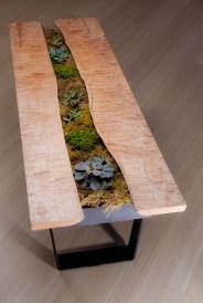 Live Edge Succulent Table