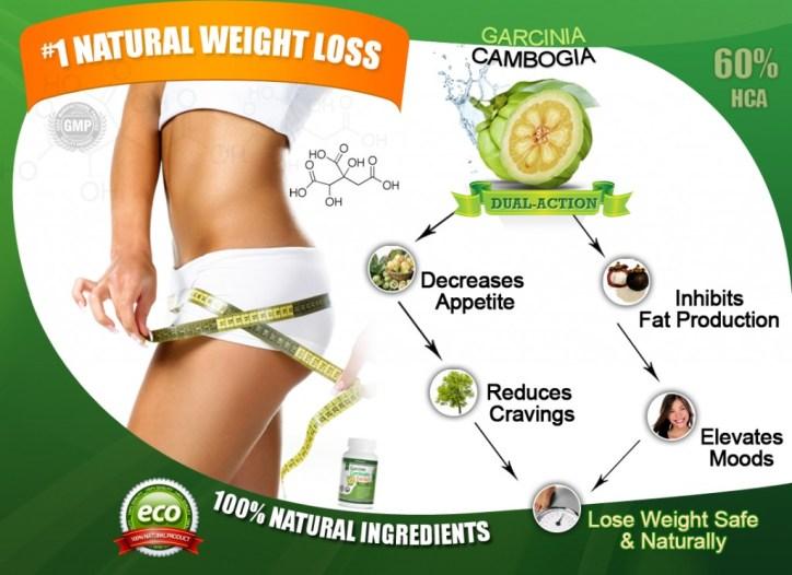 GarciniaCambogiaExtract_VitOrganics_WeightLossProcess-1024x744