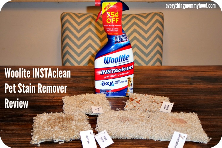 Woolite 174 Instaclean Pet Stain Remover Review Ad