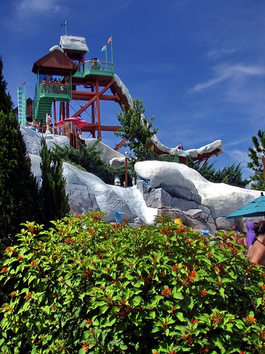 Blizzard Beach Summit Plummet