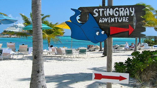 Disney Cruise Castaway Cay Stingray Adventure