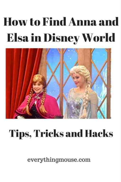 How to Find Anna and Elsa in Disney World Pin