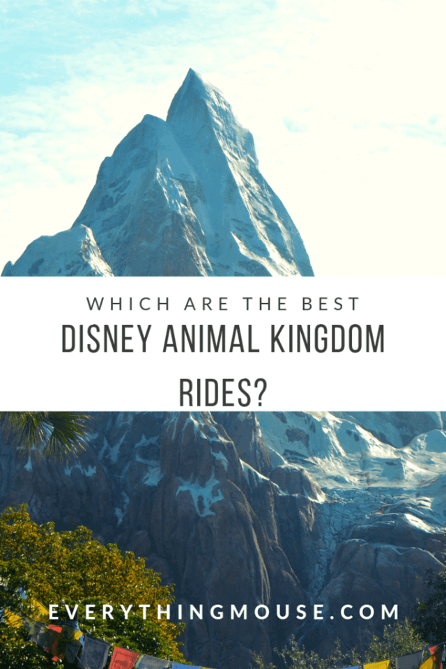 disneyanimalkingdomrides
