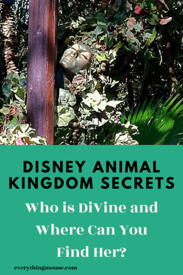disneyanimalkingdomdivine