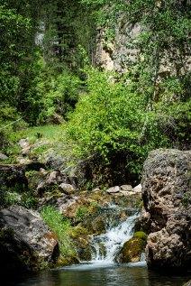 Iron Creek in Spearfish Canyon