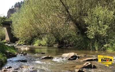 The Resilience of Nature – Whitewood Creek