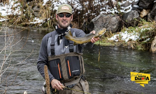 Fly Fishing Report for November 4th, 2018