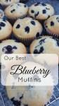 bluberrymuffins