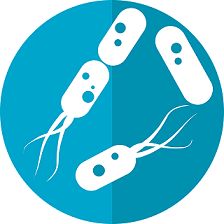 probiotiķi