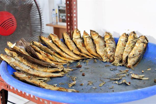 Ikan Bandeng kaya nutrisi dan berkhasiat
