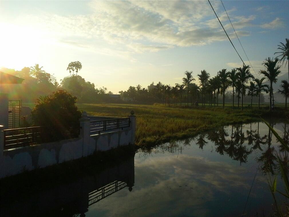 Pemandangan pagi hari di desa