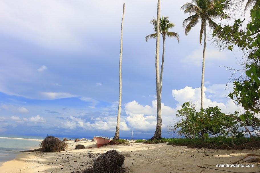 Pulau Manimbora misteri tulang belulang manusia