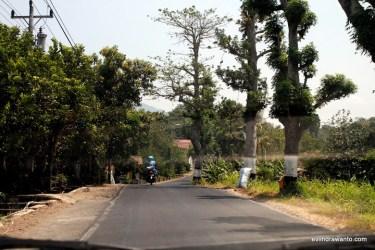 Jalanan menyusurui punggung Muria