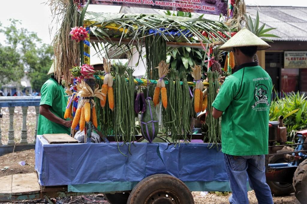 Sayuran hasil Pertanian Lampung
