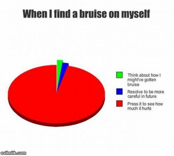 Find A Bruise