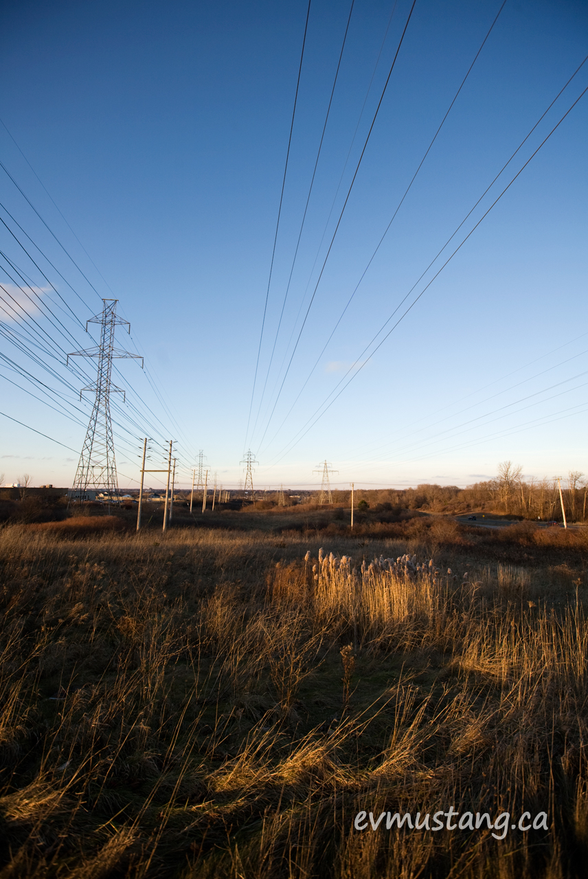 image of hydro lines over scrub next to the highway in London, Ontario