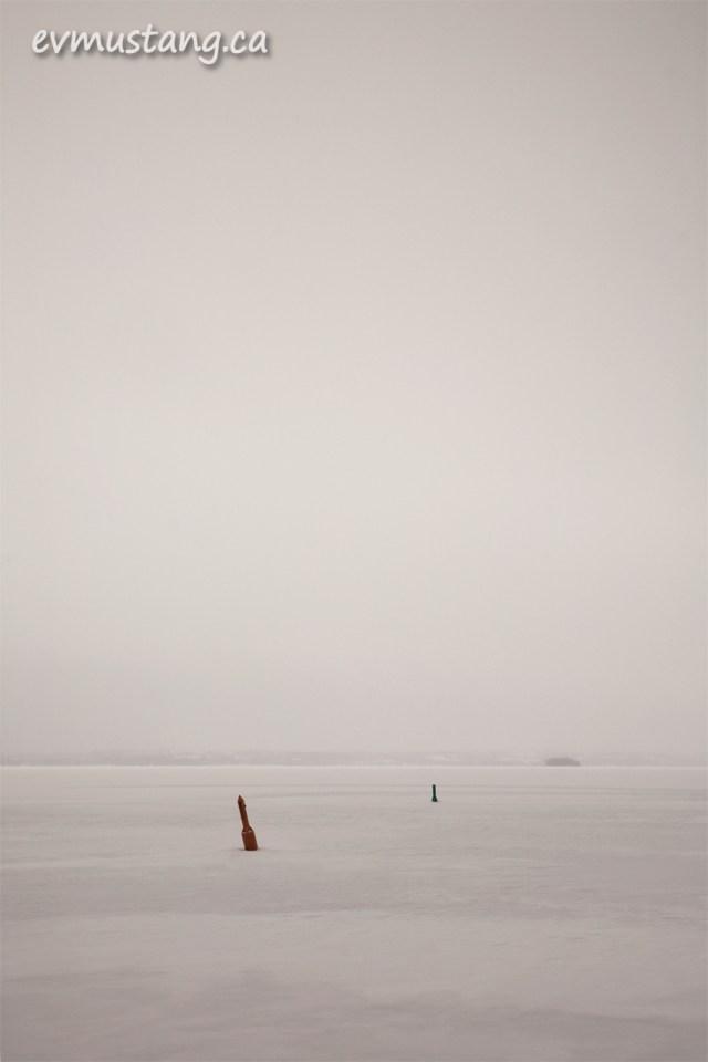 image of buoys frozen in rice lake
