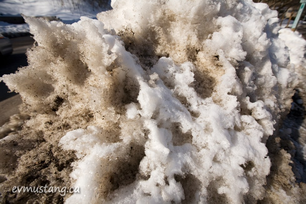 image of dessicated snow bank