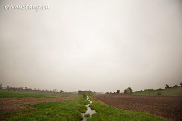 image of stream in fog in late spring