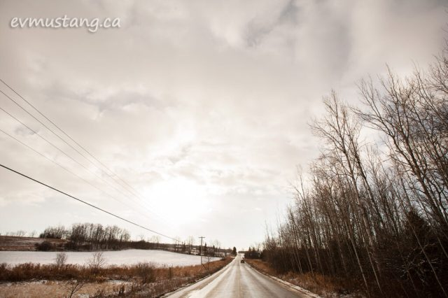 image of wet slick road through light snow covered field next to stand of birches
