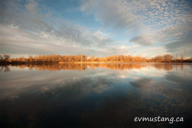 image of westminster ponds 2015