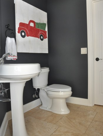 Nightfall Dark Gray Paint Color in Bathroom