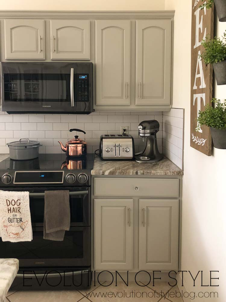Sherwin Williams Mindful Gray Paint Color