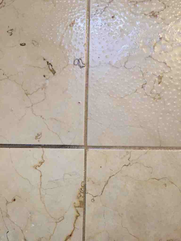 Oreck Orbiter - Dirty Grout Before and After