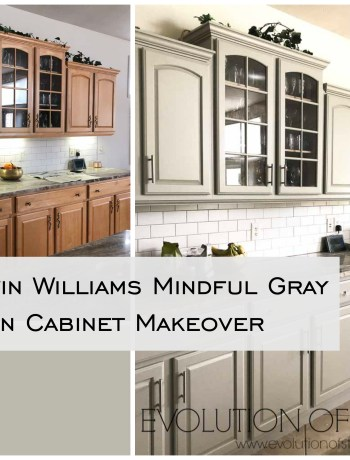 Sherwin Williams Mindful Gray Kitchen