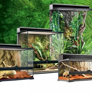 Exo Terra Medium Terrarium