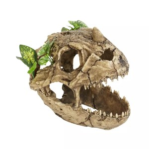 ProRep Resin Dinosaur Skull with plants, LARGE