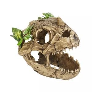 ProRep Resin Dinosaur Skull with plants, LARGE